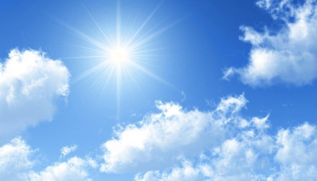 37133055-sunny-pic